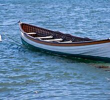Long Boat Moored by phil decocco
