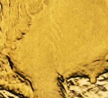 $50 Gold Coin American Buffalo Sticker Sticker