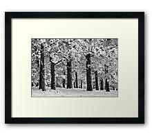 BlueBell Ridge Framed Print