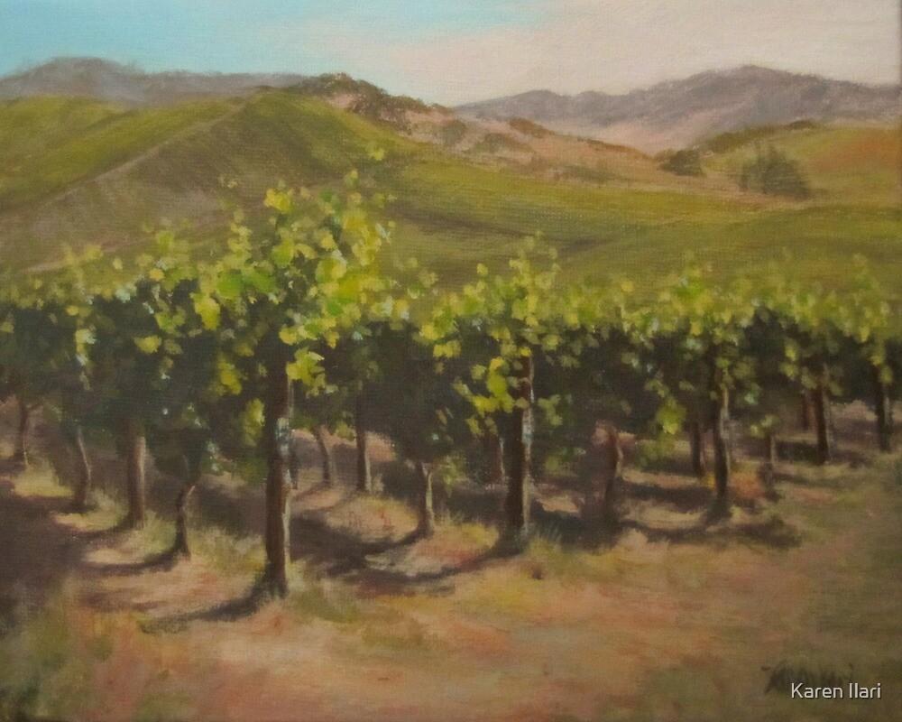 Vineyard Summer by Karen Ilari
