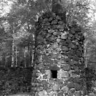 Delaware Mine Furnace Tower by jrier