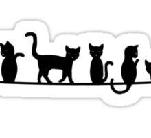Nine Black Cats On Line Sticker