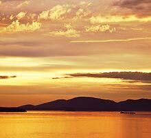 San Juan Sunset by Barb White