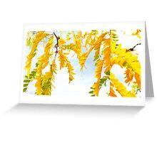 Citrus Skies... Greeting Card
