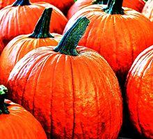 Pick a Pumpkin by Poete100