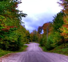 Almost Home by Monica M. Scanlan