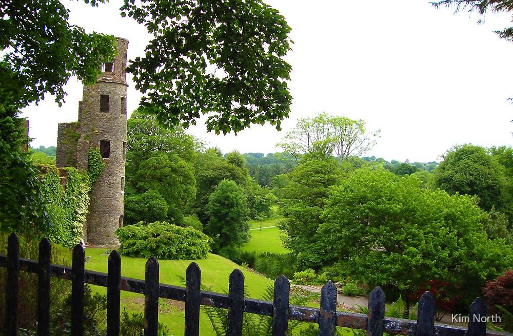 Blarney Castle - Blarney, Ireland  by Kim North