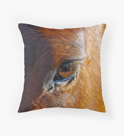 Fading Hope Throw Pillow