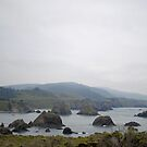A Foggy Day Along The Coast by NancyC