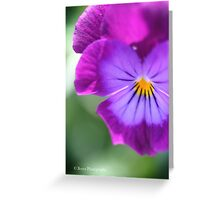 Macro Flower Greeting Card