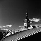Rīgas Doms | The Riga Dom by Roberts Birze