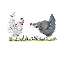 Chess playing chickens Photographic Print
