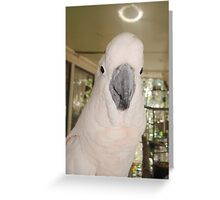 MY LITTLE ANGEL, CASSIE Greeting Card