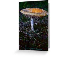 Mushroom Kingdom (7409) Greeting Card