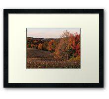 Farmland in fall Framed Print