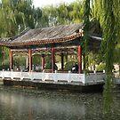 Ritan Park Beijing by Robert Ellis