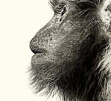 Monkey To God.............................., Line Engaged - Your Call Is Important To Me? by Vein
