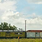 Mail Train In Open Field by Larry Costales