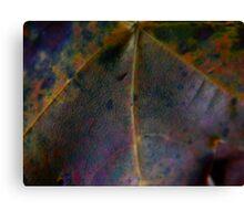 Rainbow Leaf (8033) Canvas Print