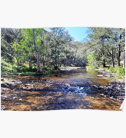The Turon River at Turon Gates Poster