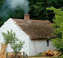 Old Farmhouse by Anthony M. Davis