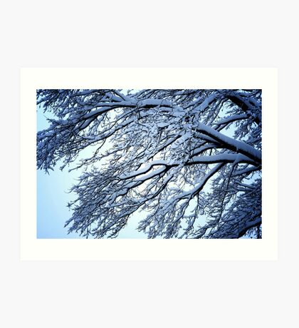Snow Tree Art Print