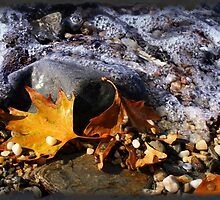 Waves For Autumn by Murat A CICEK