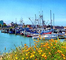 Boat Docks in Humboldt Bay by Anthony M. Davis