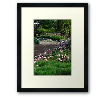 Floral Path Framed Print