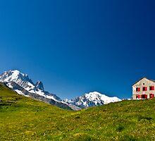 Tour de Mont Blanc by David  Curtis