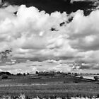 Bosworth Panorama by Paul Richards