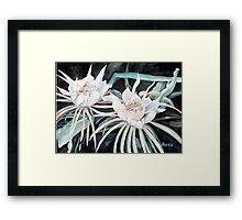 Night Blooming Cirrus at Midnight Framed Print