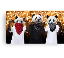 Panda Possé Canvas Print