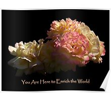 Enrich The World Poster