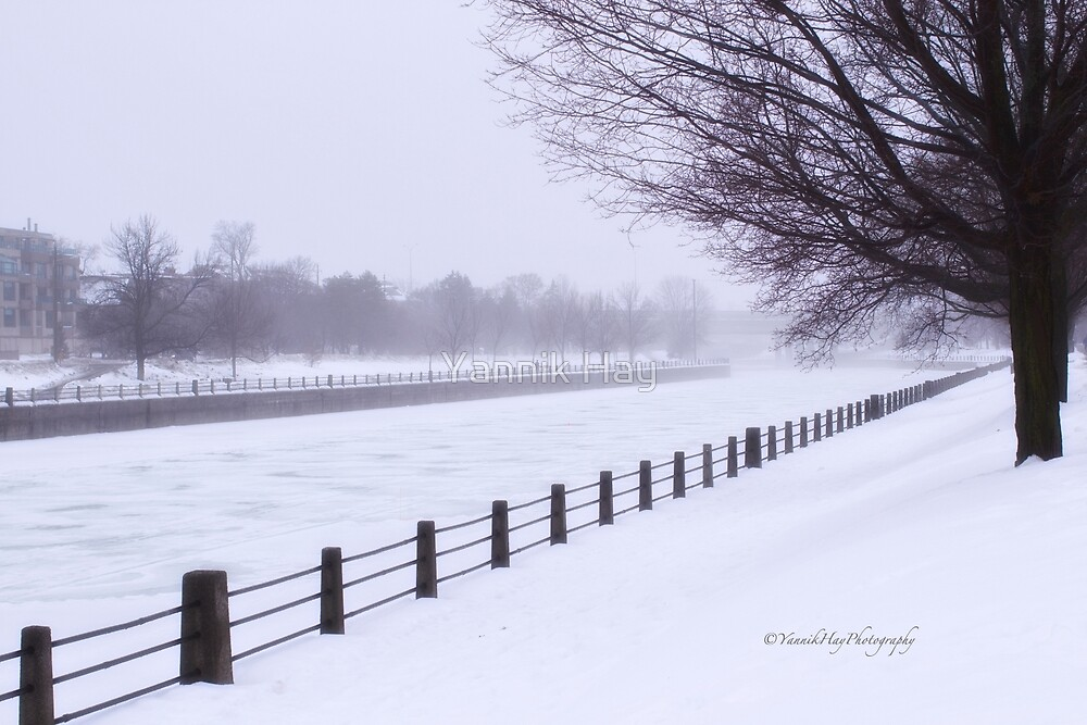 Winter Fog - Rideau Canal by Yannik Hay