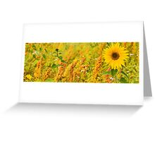The Sunflower and his disciples Greeting Card