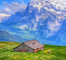 Summer At Swiss Apls by ad8465