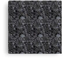 Planet Series/Asteroid Canvas Print