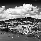 View of Fowey by Paul Richards