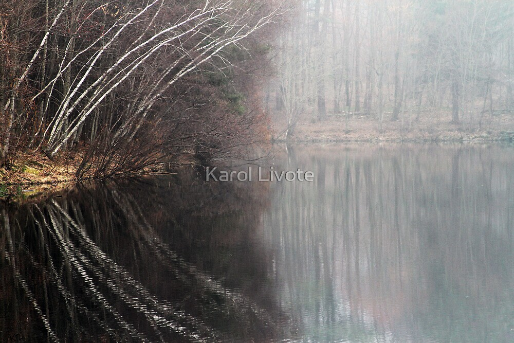 Divided By Nature by Karol Livote