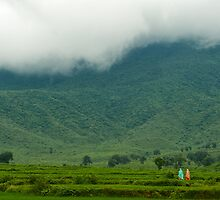 The Monsoon Mood of Nature by Mukesh Srivastava