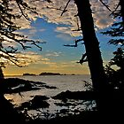Ucluelet at Sunrise by Phil McComiskey