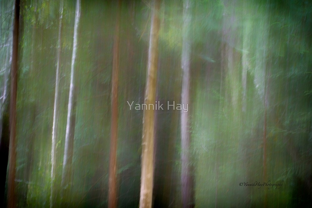 Symphony in green 2 by Yannik Hay