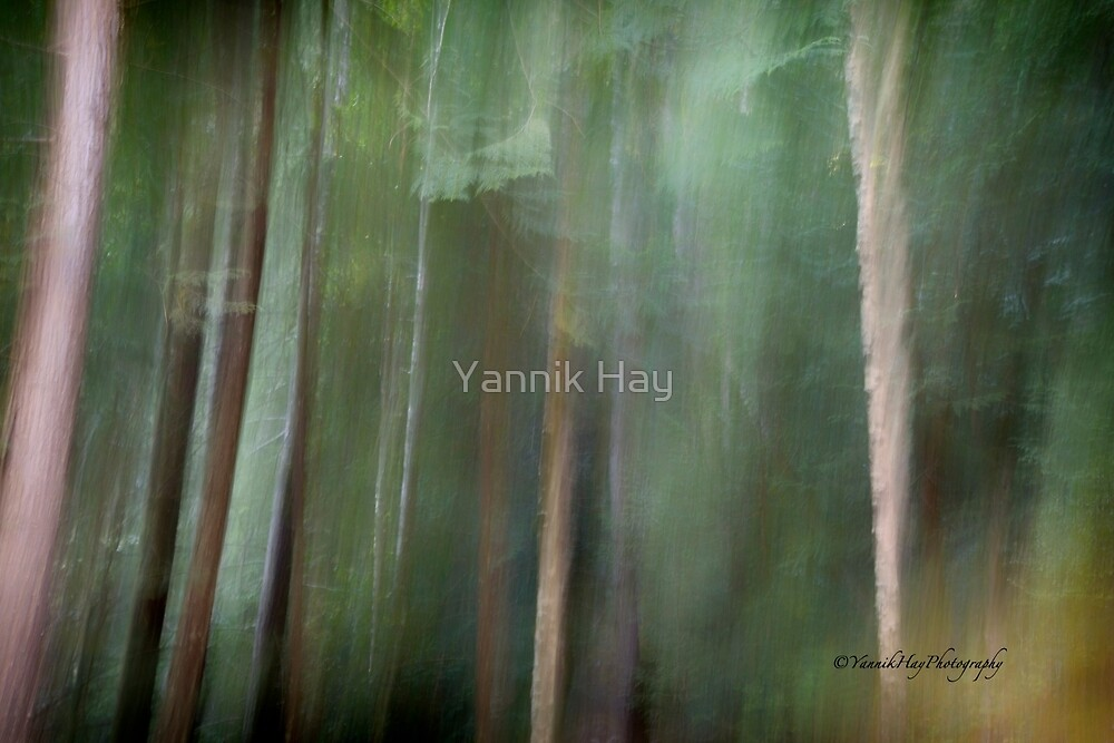 Symphony in green by Yannik Hay