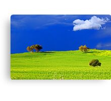 Green Acres  Canvas Print