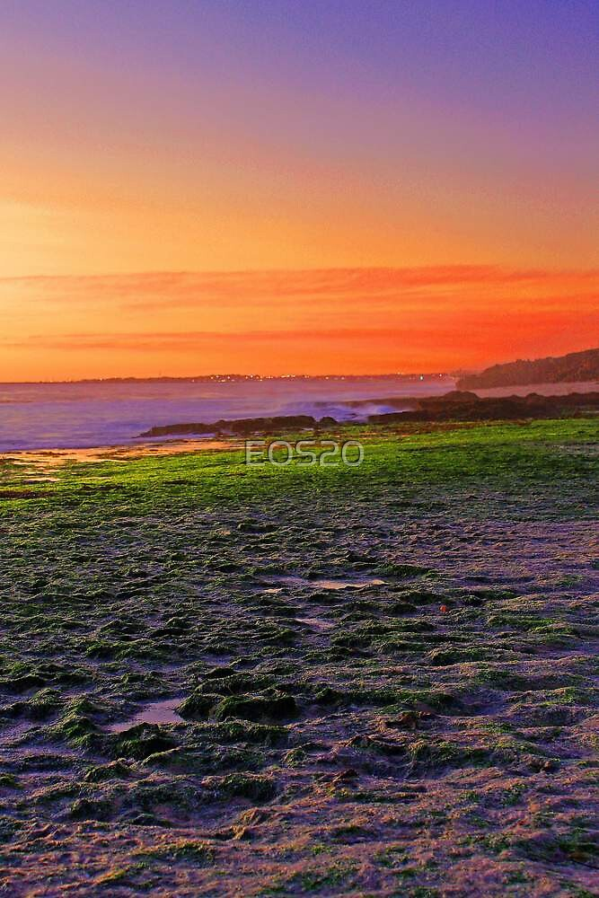 North Beach At Sunset  by EOS20