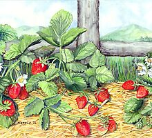Strawberries and Rail Fence by clotheslineart