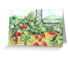Strawberries and Rail Fence Greeting Card