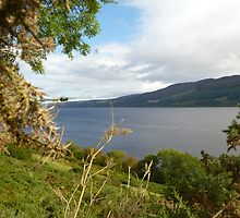 Loch Ness by Vicki Spindler (VHS Photography)