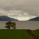 Tip of Loch Ness by Vicki Spindler (VHS Photography)